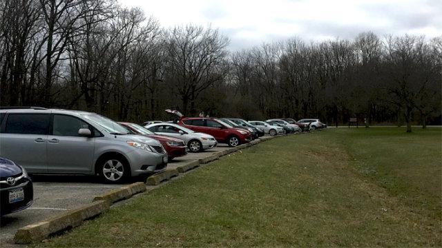 外出制限中のシカゴ郊外の公園/TAOブログ