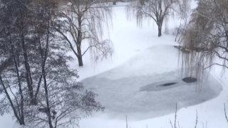 凍った池 シカゴ2019