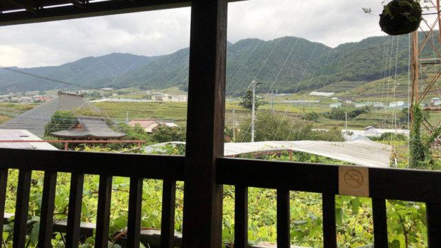 原茂ワイン2階/TAOブログ