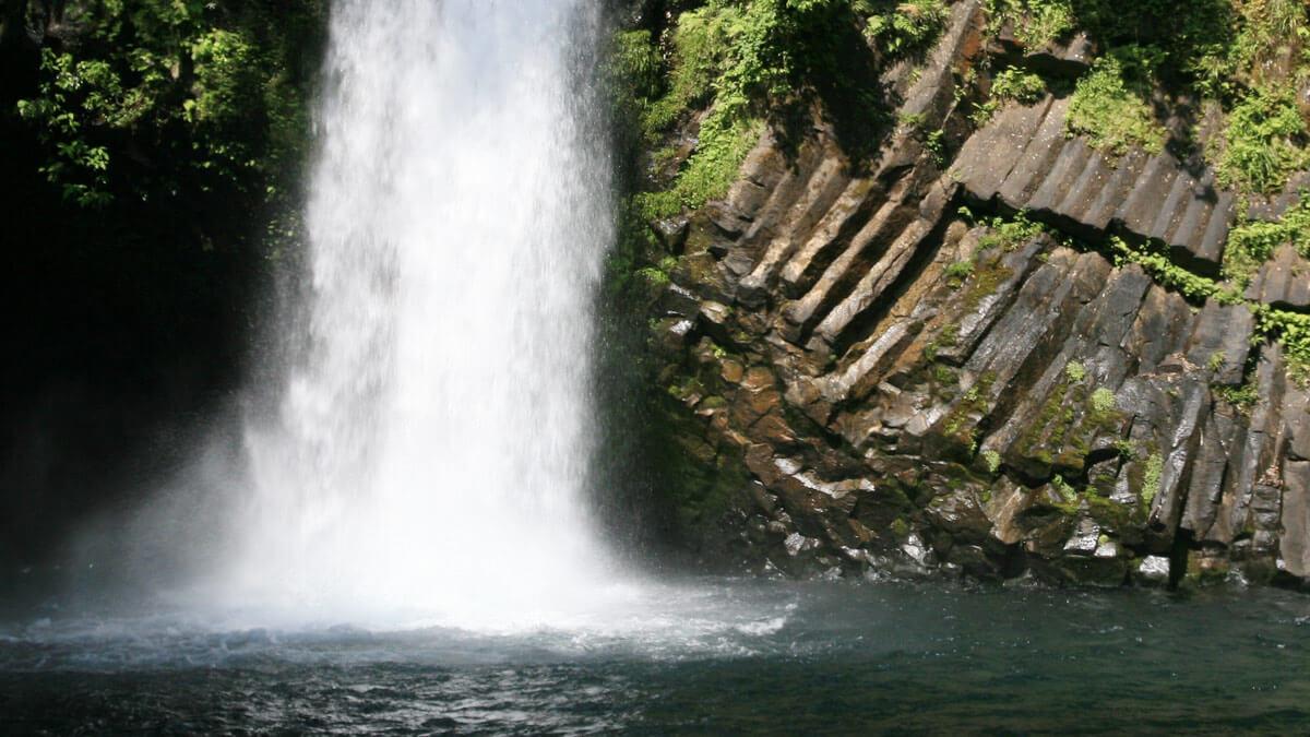 伊豆半島ジオパーク 浄蓮の滝/ TAOブログ