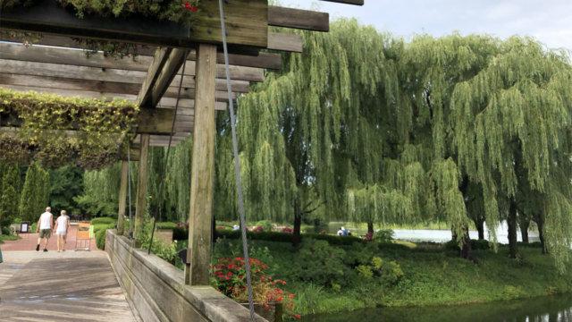 シカゴ植物園 TAOblog